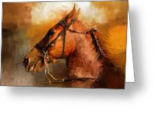 Tennessee Walker In August Greeting Card