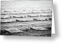 Terezin Cemetery Graves - Czechia Greeting Card