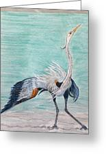 Terri's Heron Greeting Card