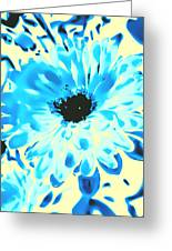 Test Aster Greeting Card