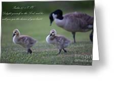 Psalm 37 Greeting Card