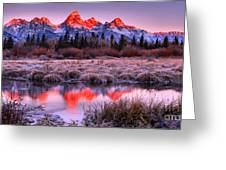 Teton Reflections In The Frosted Willows Greeting Card