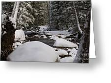 Teton River In Winter Greeting Card