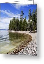 Teton Shore Greeting Card