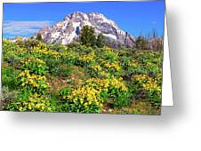 Teton Spring In The Valley Greeting Card
