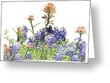 Texas Bluebonnets And Red Indian Paintbrushes Greeting Card