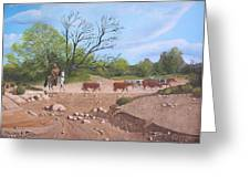 Texas Cattle Drive Greeting Card