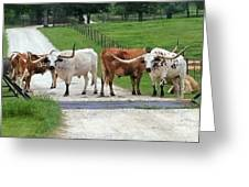 Texas Cattle Guard Greeting Card