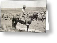 Texas: Cowboy, C1908 Greeting Card