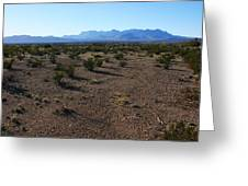 Texas Desert Greeting Card