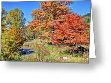Texas Hill Country Autumn Greeting Card