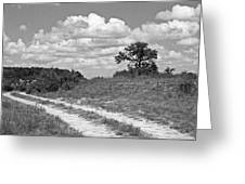 Texas Hill Country Trail Greeting Card