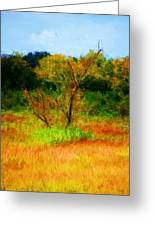 Texas Landscape 102310 Greeting Card