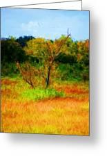 Texas Landscape 102310 Greeting Card