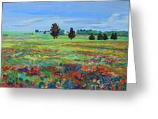 Texas Landscape Bluebonnet Indian Paintbrush Explosion Greeting Card