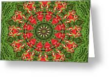 Texas Paintbrush Kaleidoscope Greeting Card
