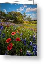 Texas Paradise Greeting Card