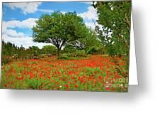 Texas Poppy Field 159 Greeting Card
