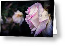 Texas Rain Drops Greeting Card by Amber Dopita
