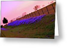 Texas Sherbet Country Greeting Card