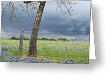 Texas Spring Storm Greeting Card