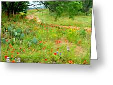 Texas Wildflowers And Cactus - Country Road Greeting Card