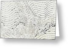 Texture 811 Greeting Card