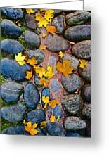 Texture. Autumn. Greeting Card