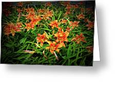 Texture Drama Field Of Tiger Lilies Greeting Card