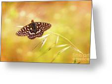 Textured Chalcedon Butterfly Greeting Card