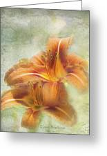 Textured Daylilies  Greeting Card