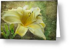 Textured Daylily Greeting Card