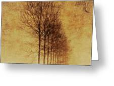 Textured Eerie Trees Greeting Card