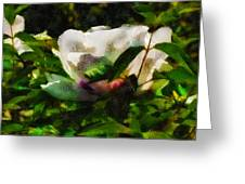 Textured Nature Greeting Card
