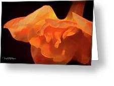 Textured Orange Greeting Card