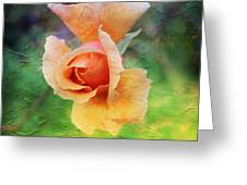 Textured Rose 3 Greeting Card