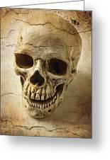 Textured Skull Greeting Card