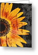 Textured Sunflower Greeting Card by Cathie Tyler
