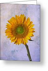 Textured Sunflower Greeting Card