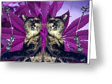 Tha 2piece Kitty Greeting Card