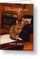 Thanks For All Your Help Greeting Card