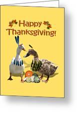 Thanksgiving Indian Ducks Greeting Card