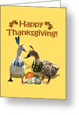 Thanksgiving Indian Ducks Greeting Card