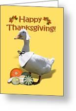 Thanksgiving Pilgrim Duck Greeting Card
