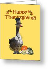 Thanksgiving Pilgrim Goose Greeting Card