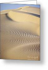 Thar Desert Dunes Greeting Card
