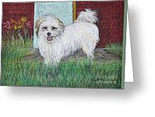 That Little White Dog Greeting Card