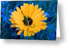 Imaginary Flower Greeting Card