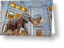 The African Bush Elephant In The Rotunda Of The National Museum Of Natural History Greeting Card