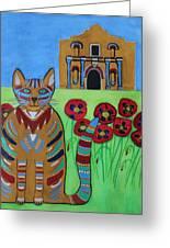 the Alamo Cat Greeting Card